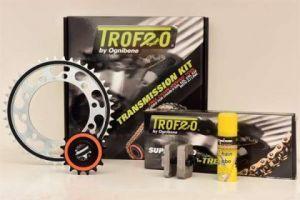 Kit cadena Trofeo Yamaha MT-09 850 - ABS - TRACER 850cc 13-16(16-45-110)